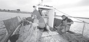 Urlop na kutrze rybackim, Torrevieja