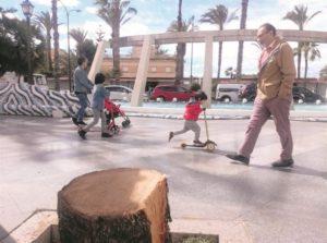 Śmierć palm, Torrevieja